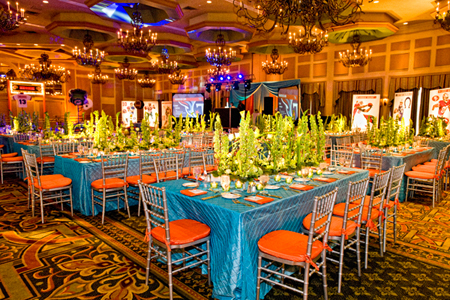 Football bar mitzvah party theme heshie loves the miami dolphins the junglespirit Images