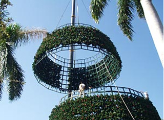 Linzi Events ... & Downtown Delray Beach  the 100 foot Christmas tree. - Linzi Events ...