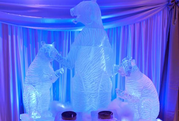 ice bears5