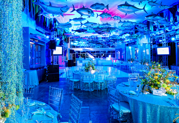 Under The Water Barmitzvah And Batmitzvah Themes Linzi